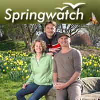 watch Springwatch series